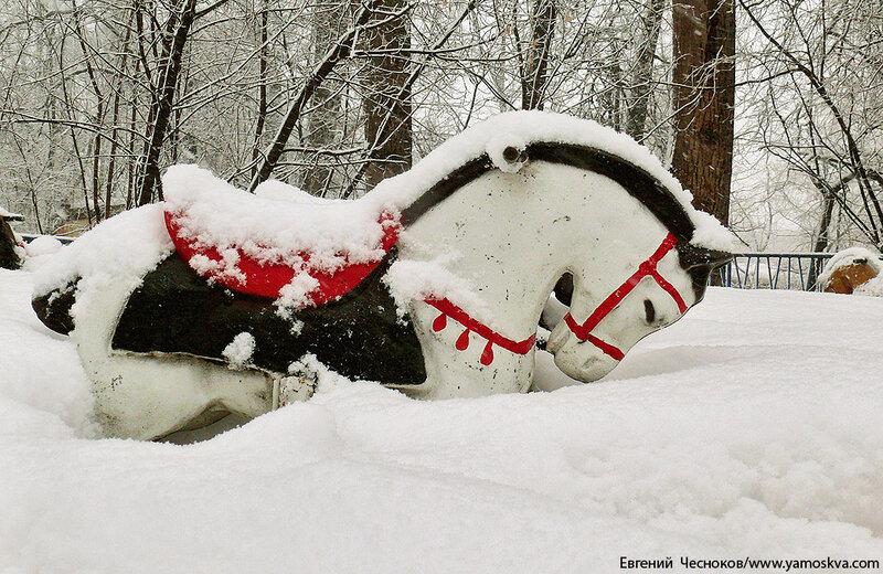 Зима. Парк Останкино. 04.02.13.37..jpg