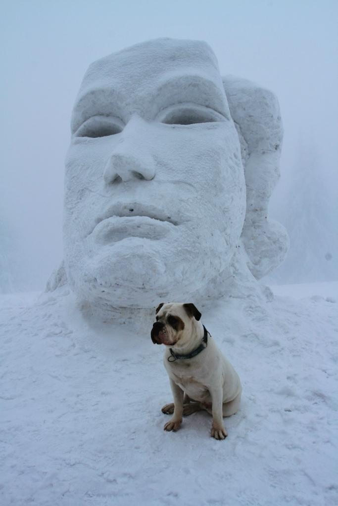 Снежное королевство 2013 - фото 1