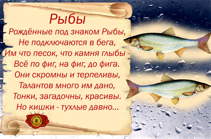 Стихи про подарок рыбу 15