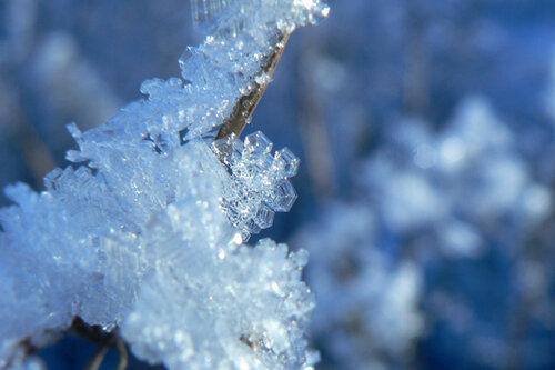 зимняя прогулка кристалл