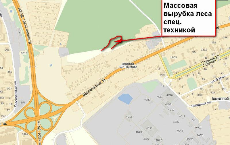 Вырубка квартал Щитикова