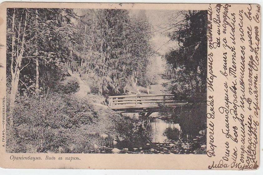 Вид в парке