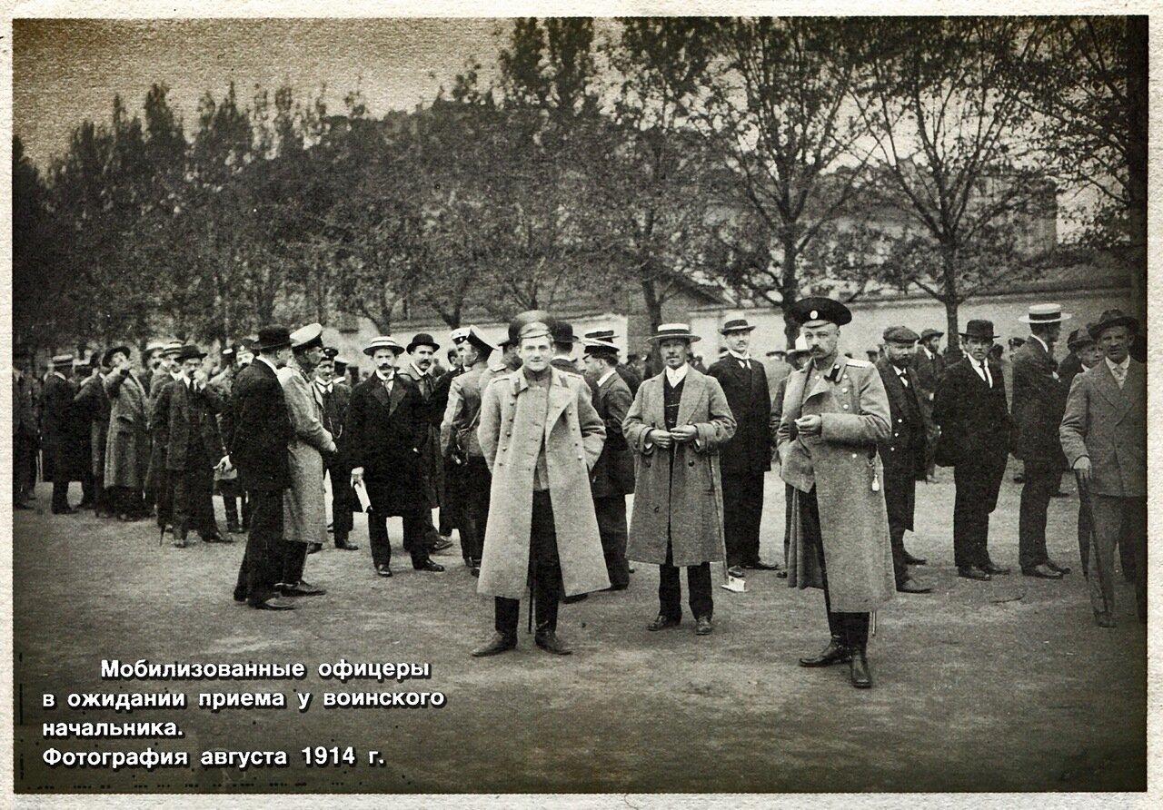 Мобилизованные офицеры в ожидании приема у воинского начальника. Август 1914