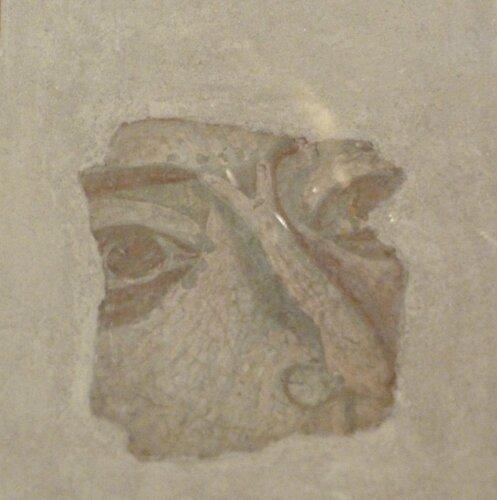 Скопье. Музей Македонии