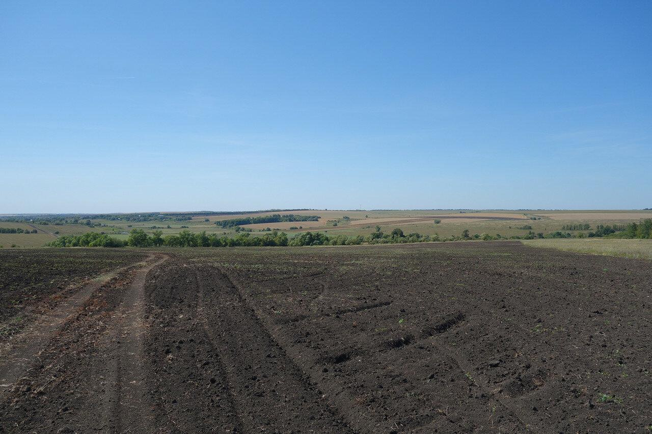 долина реки Упа у Скородумово