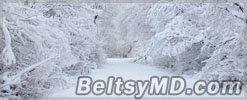 В Молдове ожидаются значительное похолодание и снегопады