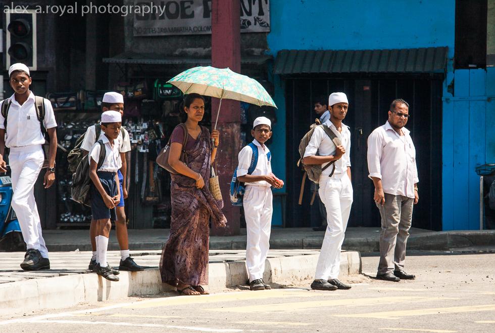 Проститутки шри ланке шлюхи в Тюмени ул 3-я Западная