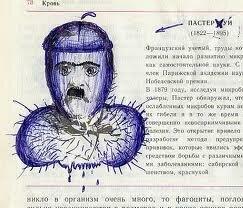 Рисунки в учебниках