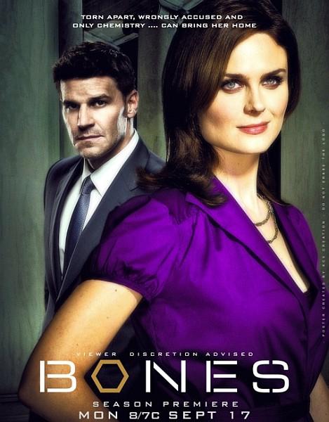 Кости / Bones (8 сезон/2012-2013/WEB-DLRip)