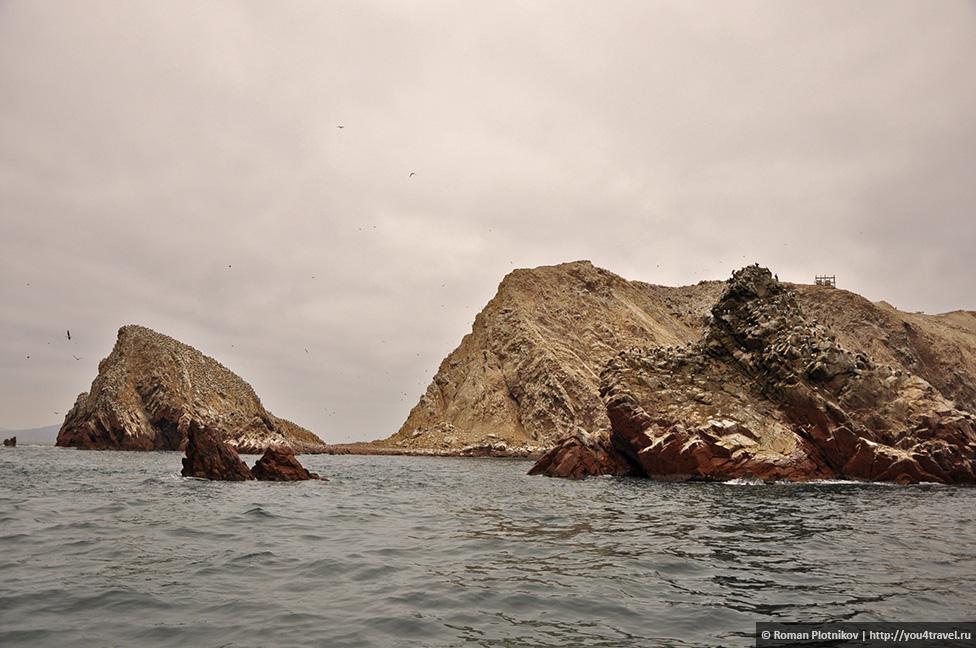 0 161742 aa8daec9 orig Национальный парк Паракас и острова Бальестас в Перу