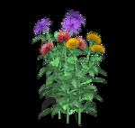 Dahlia-Belles-Graphics.png