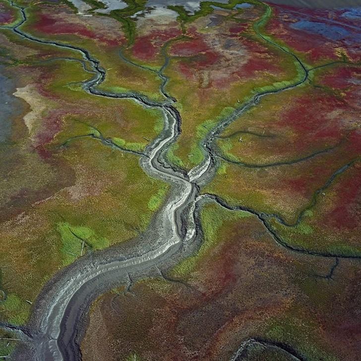 18. Заповедник «Суситна Флэтс», Аляска