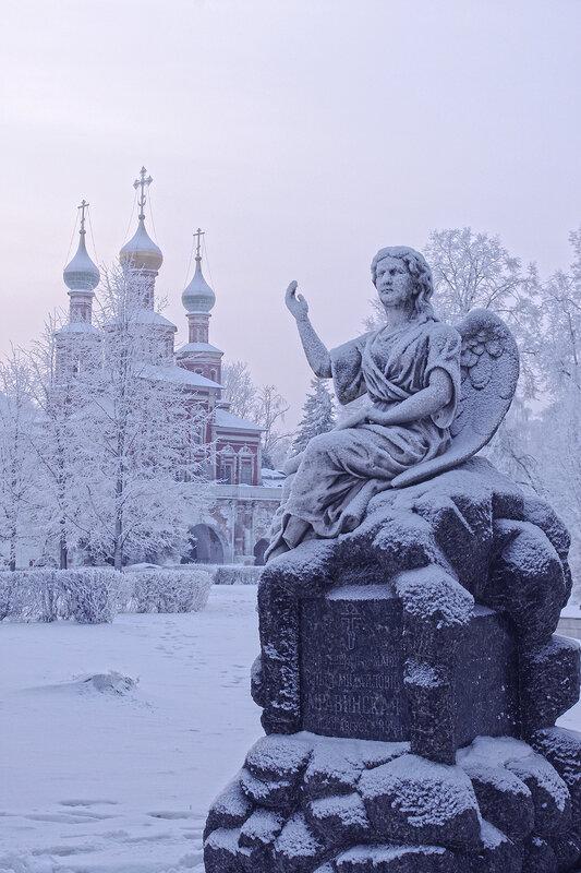 Зимы безмолвный ангел