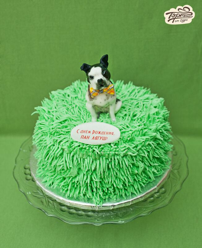 Торт из киви черепаха рецепты тортов