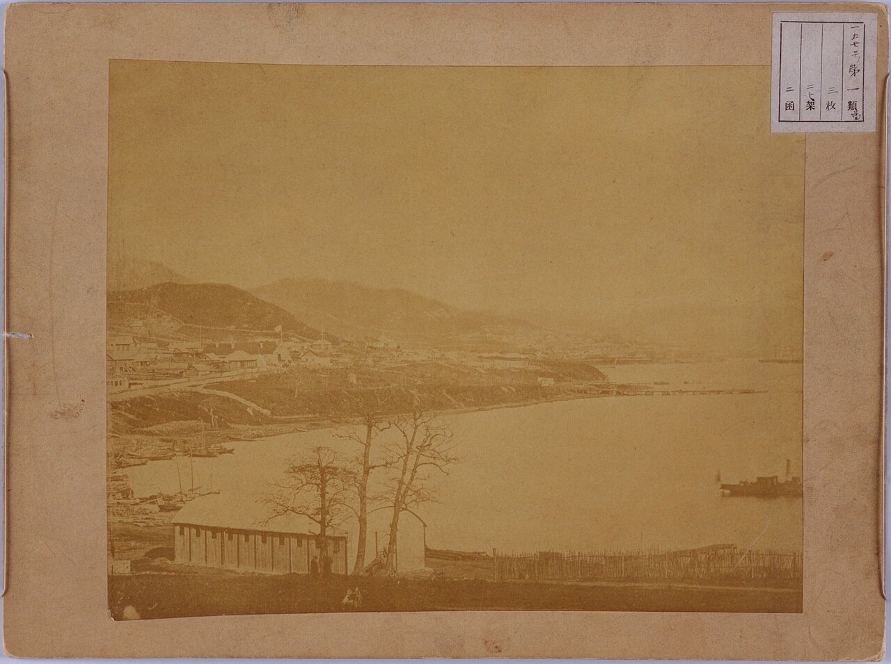 Порт Владивосток 1878 г.