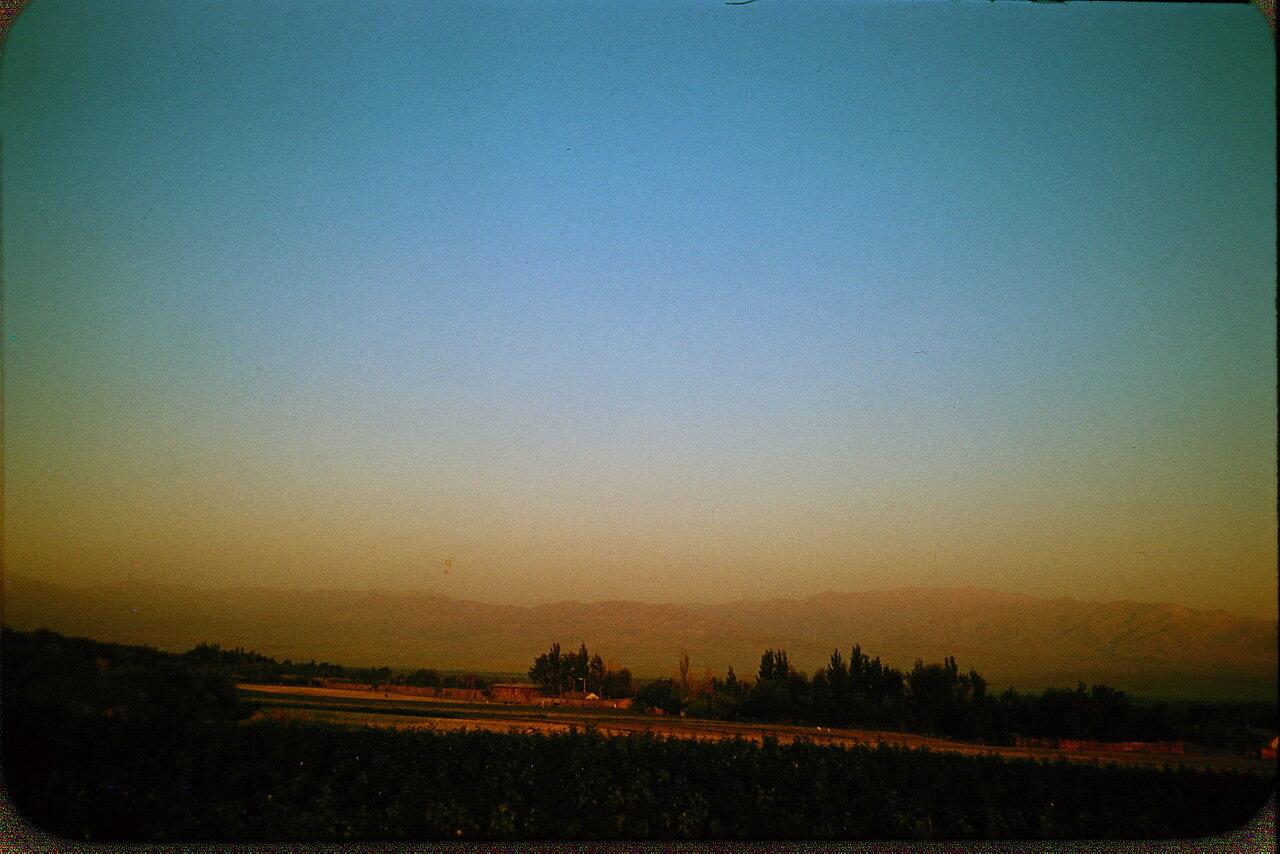39. Сельская местность возле Ташкента. На заднем плане - горы Тянь-Шаня