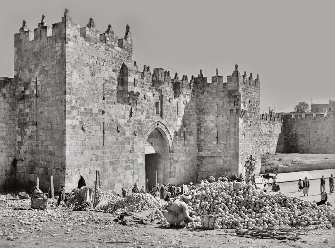 Горы апельсинов возле Дамасских ворот. Иерусалим. 6 Мая 1944 г.