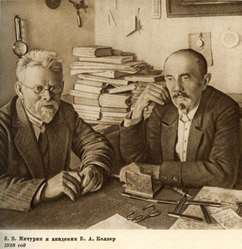 Мичурин и академик Келлер,1928 г.