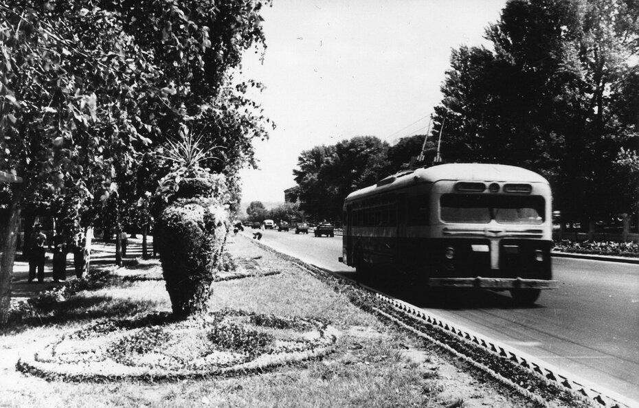 1953.07. Газон на Брест-Литовском шоссе в районе Политехнического института