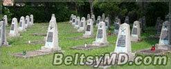 В Польше вандалы осквернили памятник на кладбище