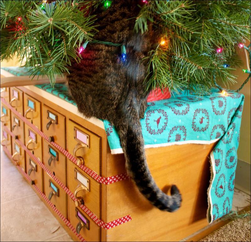 Коты на ёлке - фото 42
