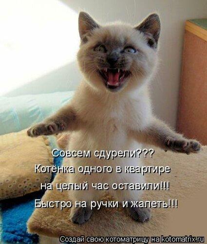 http://img-fotki.yandex.ru/get/5626/194408087.1/0_8de1e_94b1c181_L.jpg