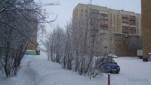 Фотография Инты №3460  Мира 65, 69, 59, 59а и 61 10.02.2013_12:54