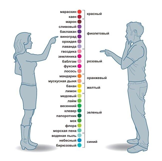 инфографика женщины мужчины цвета info man woman colors