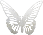 natali_everyday_ butterfly2.png
