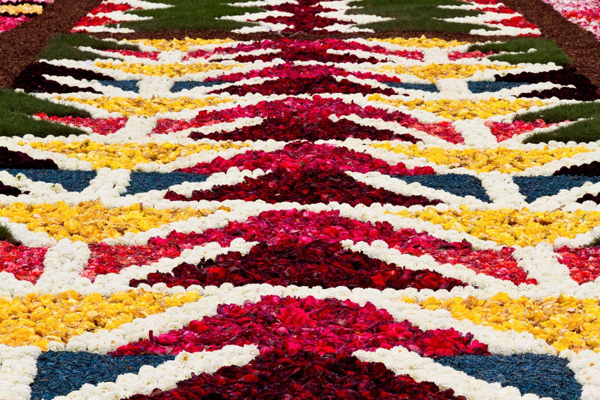 Ogromnyj-cvetochnyj-kover-v-Bryussele-15-foto