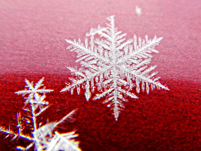 снежинка DSCN1250.jpg