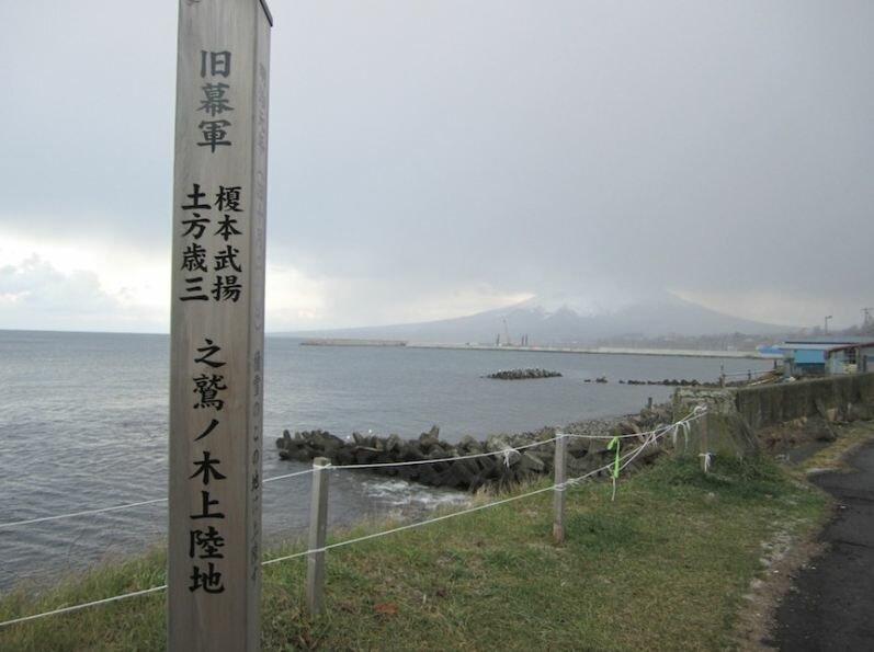 Вашиноки. Фото Хиджикаты Мэгуми