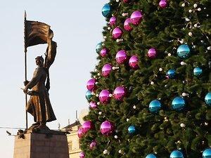 Восемь нарядных ёлок украсят Владивосток в преддверии Нового года