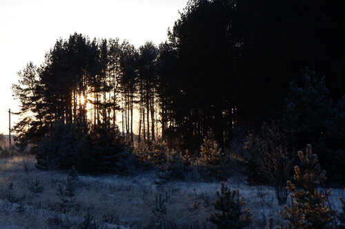зимняя прогулка сумерки