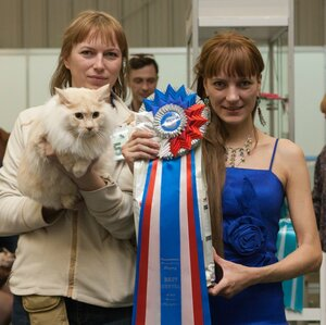 Best Neuter - 5 Ажур Байкальская Радуга (Neuter)