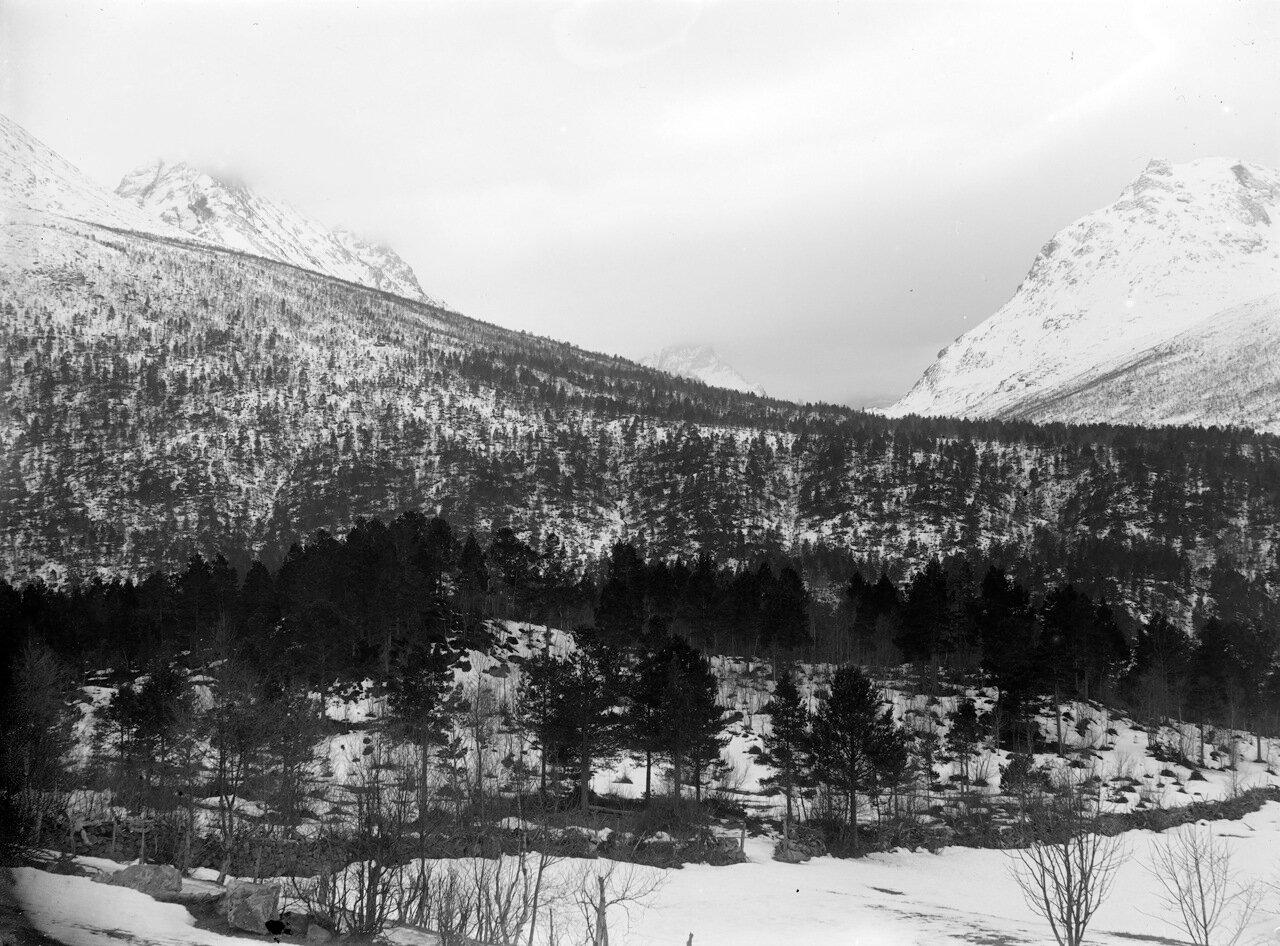 Исфьорд. около 1890-1910 гг.