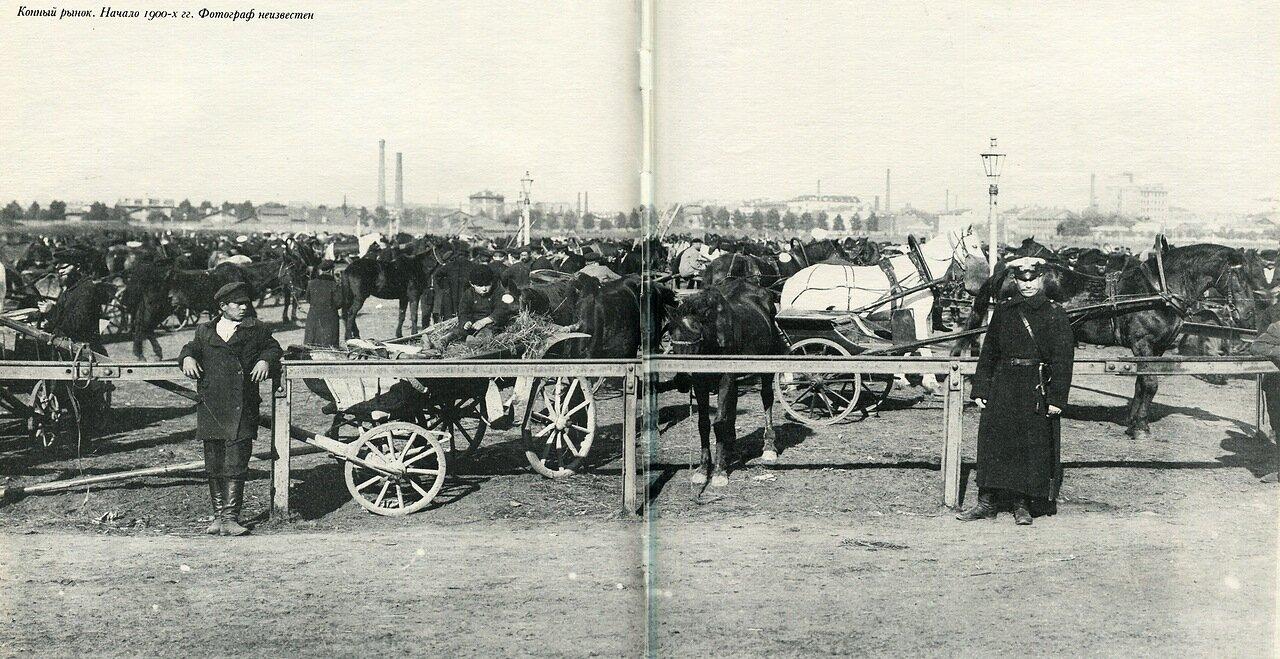 Санкт-Петербургский конный рынок
