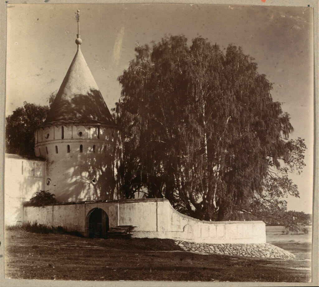 В Ипатьевском монастыре. У ограды.