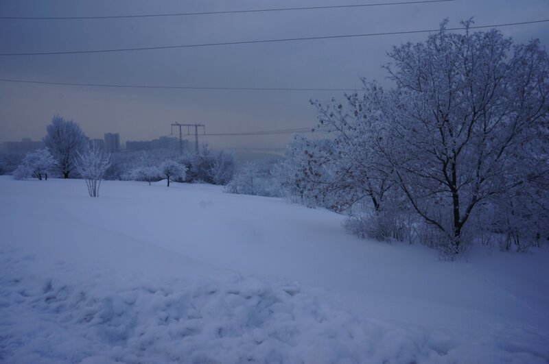 Лыжная трасса в Марьинском парке