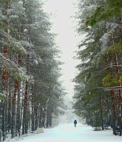 http://img-fotki.yandex.ru/get/5627/131884990.3f/0_999a9_72197648_-2-L.jpg