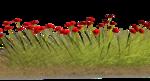 Lug_Grass_Flower (5).png