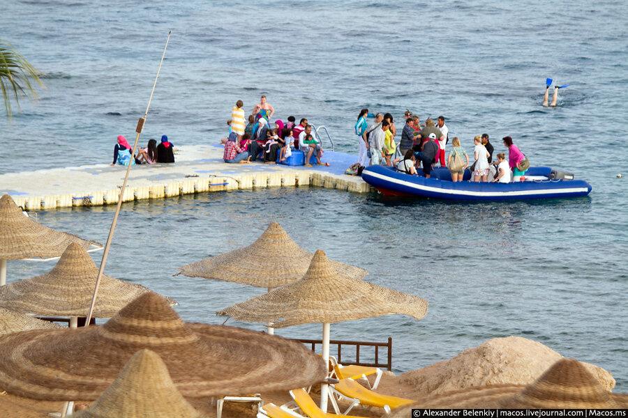 Египет без