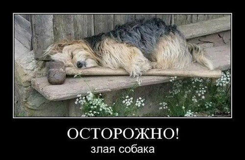 http://img-fotki.yandex.ru/get/5627/15219178.9/0_965f6_35919d57_L.jpg