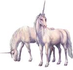 UNICORN3.png