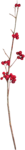 RR_HeartWhispers_Element (57).png