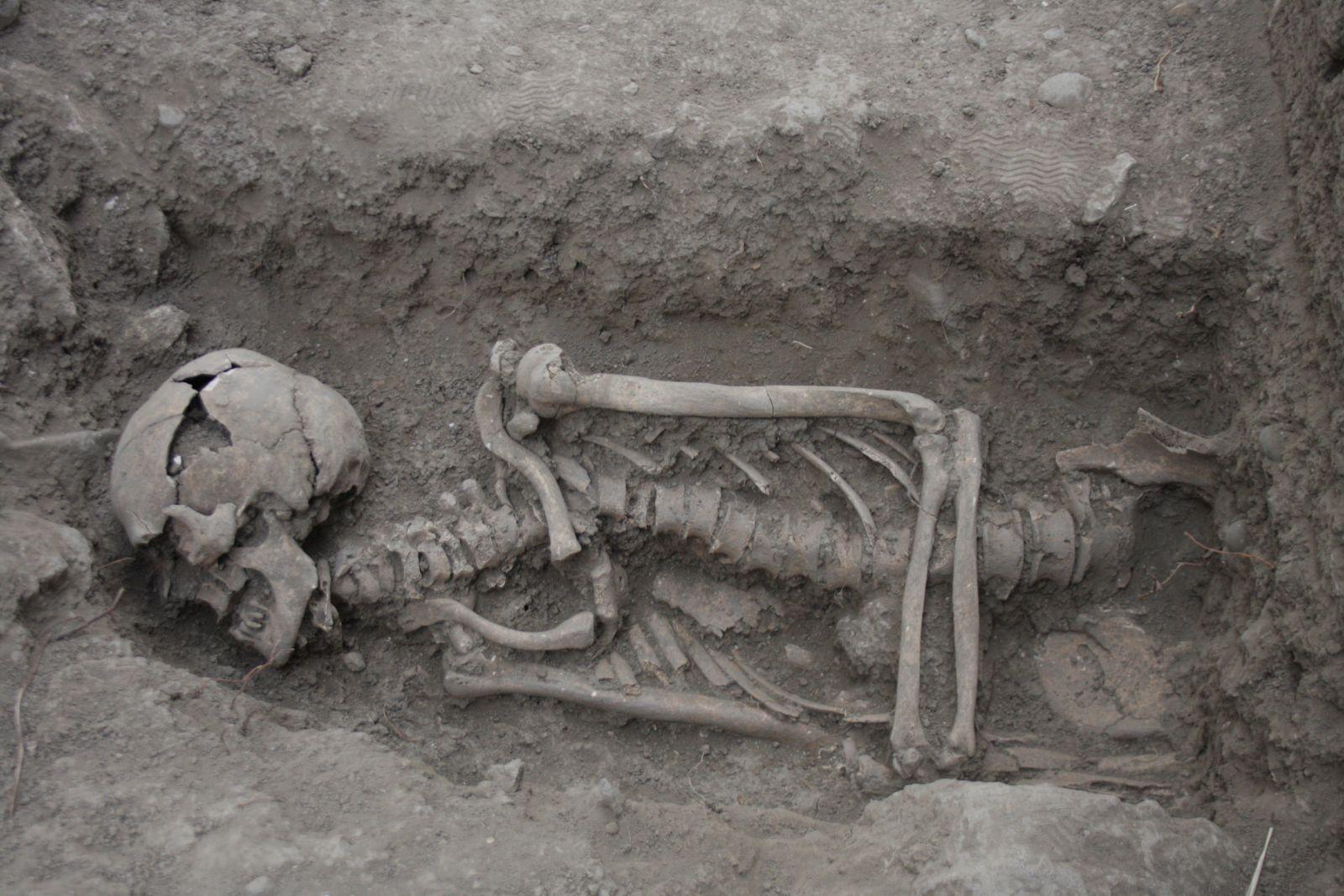 ВБелгородской области правоохранительные органы отыскали скелет 20-летней давности
