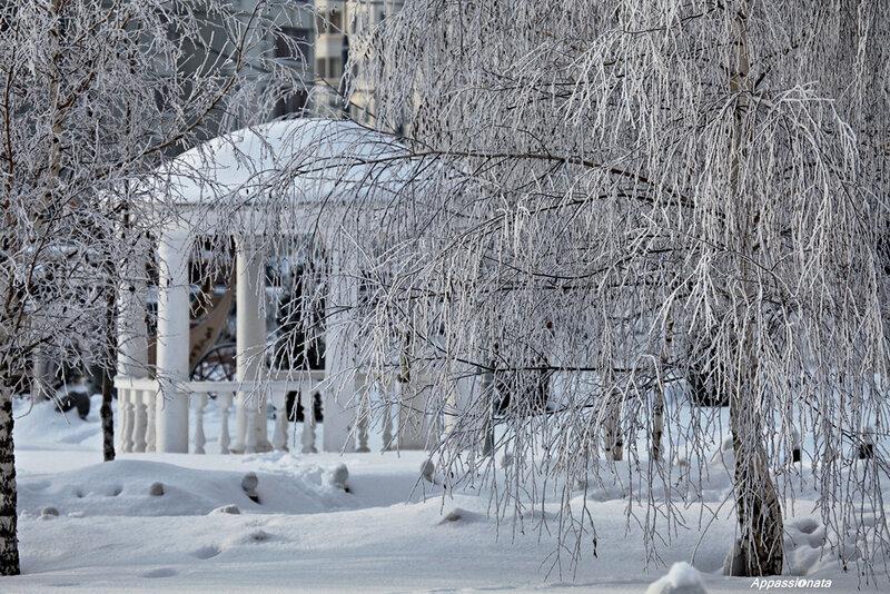 Зиминие узоры