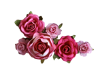 Delicious Pink (127).png