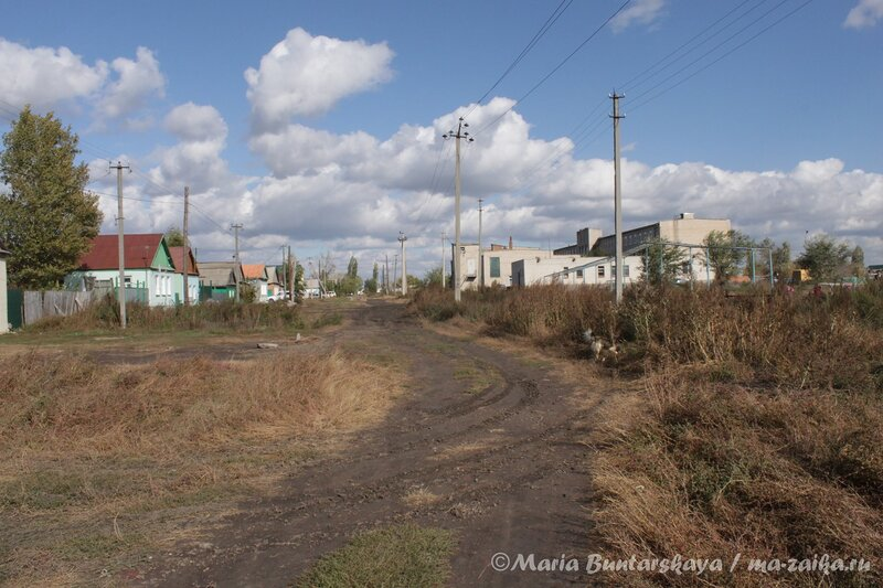 Земля саратовская, Красный Кут, 01 октября 2012 года