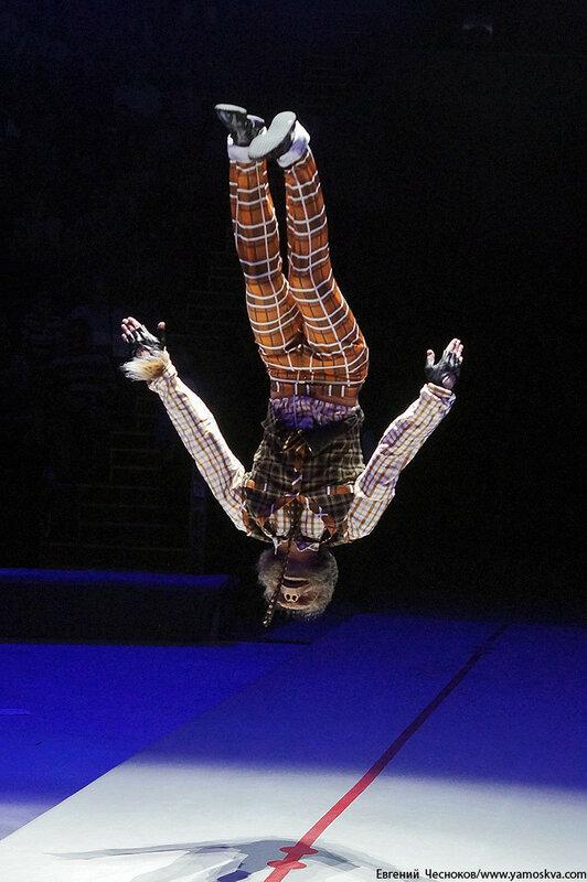 Осень. Цирковой мюзикл Мр Тигр. 23.10.15.21..jpg